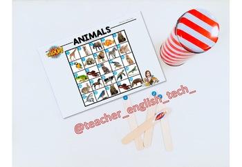 Kaboom Animals - ENGLISH