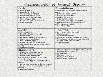 Kagan Strategies - Animal Unit