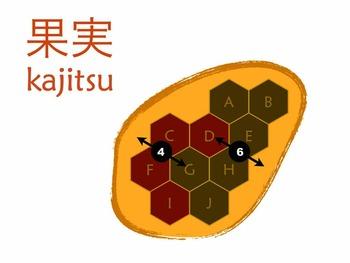 Kajitsu (Mirror & Rotational Symmetry Puzzle)