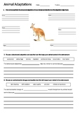 Kangaroo Adaptations Worksheet | Year 5 Science (ACSSU043)