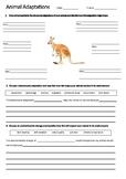 Kangaroo Adaptations Worksheet | Year 5 Science (ACSSU043)