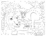 Kangaroo Extreme Dot-to-Dot / Connect the Dots - 500 Dots