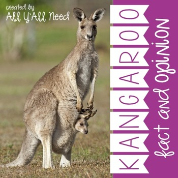 Kangaroo: Fact and Opinion