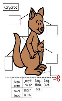 Kangaroo Mini-Theme Unit