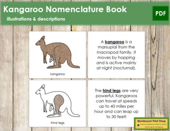Kangaroo Nomenclature Book