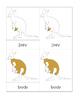 Kangaroo Nomenclature Cards