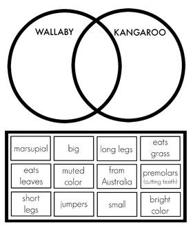 Kangaroos vs. Wallabies Venn Diagram Cut and Paste