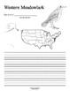 Kansas State Bird Notebooking Set (Western Meadowlark)