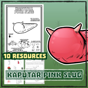 Kaputar Pink Slug -- 10 Resources -- Coloring Pages, Reading & Activities