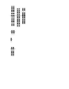 Karyotyping Activity