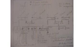 Karyotyping and Pedigree Presentation