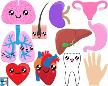 Kawaii Organs -  Clip Art Digital Files Personal Commercial Use Use cod197