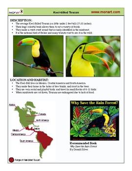 Monart Drawing Project: Keel Billed Toucan