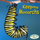 Keeping Monarchs - A Teacher Resource