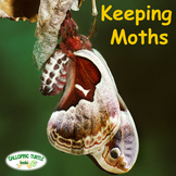 Keeping Moths