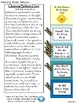 Back to School Classroom Management (Ocean Life Theme)
