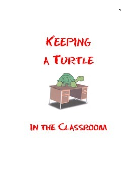 Keeping a Turtle in the Classroom