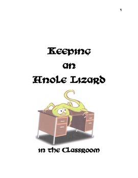 Keeping an Anole Lizard in the Classroom