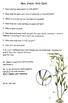 Kelp Quiz or Kelp Mini Webquest