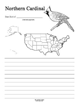 Kentucky State Bird Notebooking Set (Northern Cardinal)