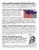 Key Events of World War II