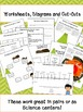Rocks and Minerals for Third Grade