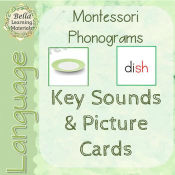 Montessori Key Phonogram Picture & Word Cards - Language - Phonograms