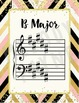 Key Signature Posters & Giant Flash Cards {Chic & Glam}