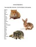 Keyboarding- Typing Games- Animal Alphabet 1 and 2
