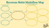 Keystone Habit Multiflow Map