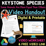 Keystone Species Documentary Video Questions Worksheet with FREE Video Link!