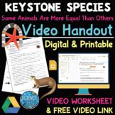 Keystone Species Video Worksheet w/ Free Video Link - Digital & Printable