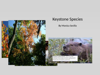 Keystone Species Powerpoint