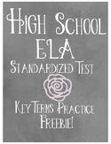 High School ELA Standardized Test Prep Freebie