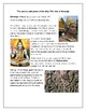 Khmer Empire - Roles and Relationships