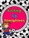 Kicking up Homophones!  Interactive Notebook Free
