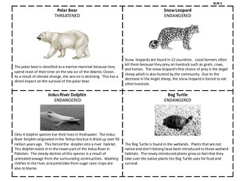 Kid created zoo:  Adaptations, Ecosystems, Habitats and more