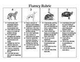 Kid friendly fluency Rubric