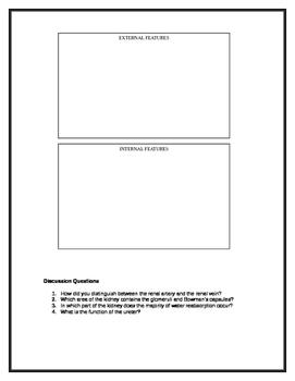 Name - Functioningorganisms2010