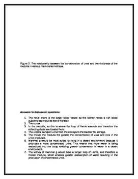 Kidney Dissection Worksheet - Checks Worksheet