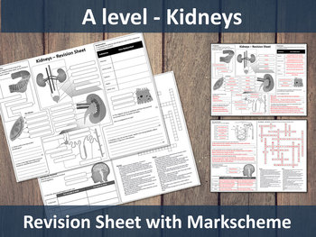 Kidneys (A level) Revision Sheet/Knowledge Organiser