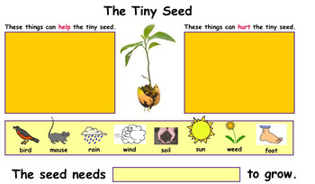 Kidspiration : The Tiny Seed