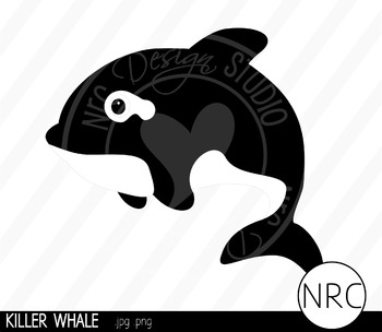 Killer whale clipart commercial use