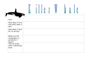 Killer Whale Graphic Organizer