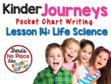 Kinder Journeys Lesson 14: Pocket Chart Writing Activities