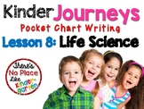 Kinder Journeys Lesson 8: Pocket Chart Writing Activity