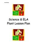 Kinder Plant Lesson