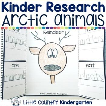 Arctic Animals Kindergarten: Research Investigation