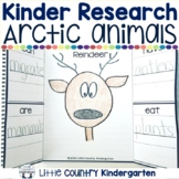 Arctic Animals Kindergarten: Research Investigation