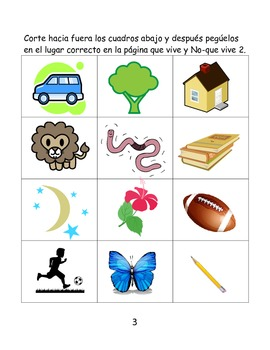 Kinder Science Notebook Template SPANISH (Life Science)
